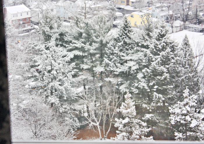 First-snow-1207