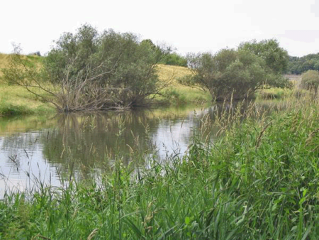 Lippe near the Roman fortress discovered at Holsterhausen