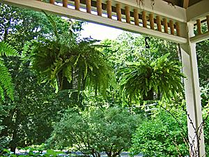 Brook Farm Porch
